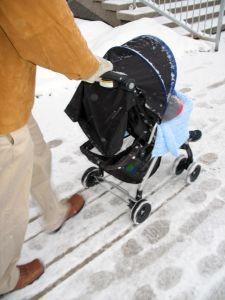 taking-a-stroll-266401-m-225x300